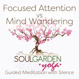 focused attention vs. mind wandering